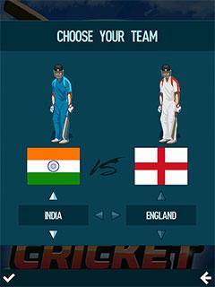 Pro Cricket 2019 4